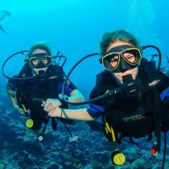 Reach the Ocean's Depths Safely with the Right Diving Gear