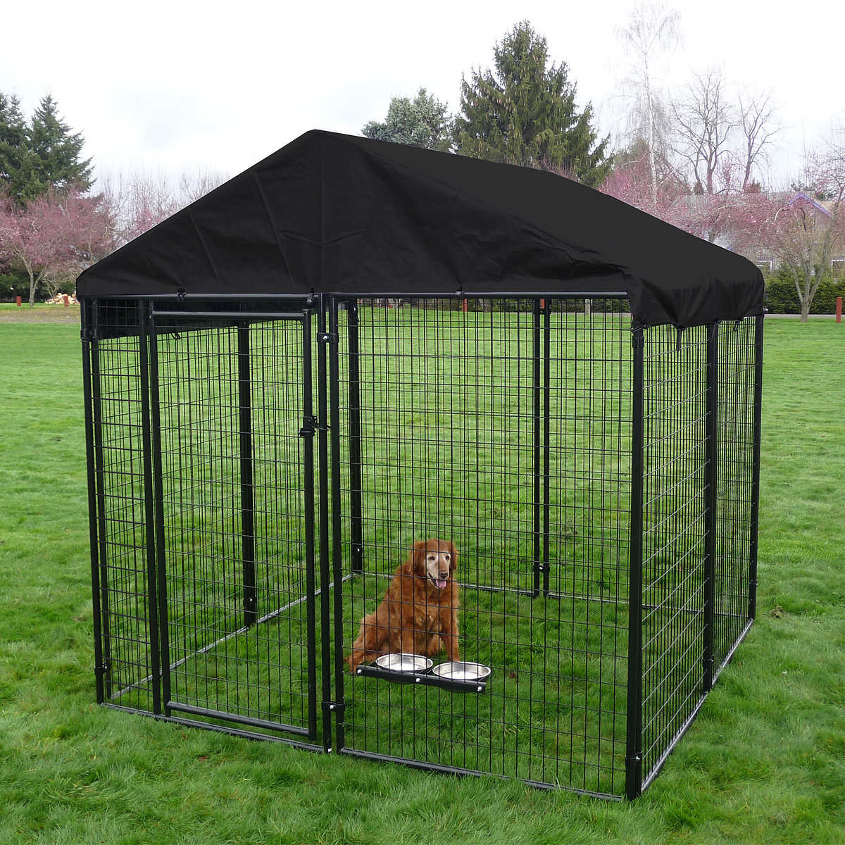 outdoor dog enclosures 1