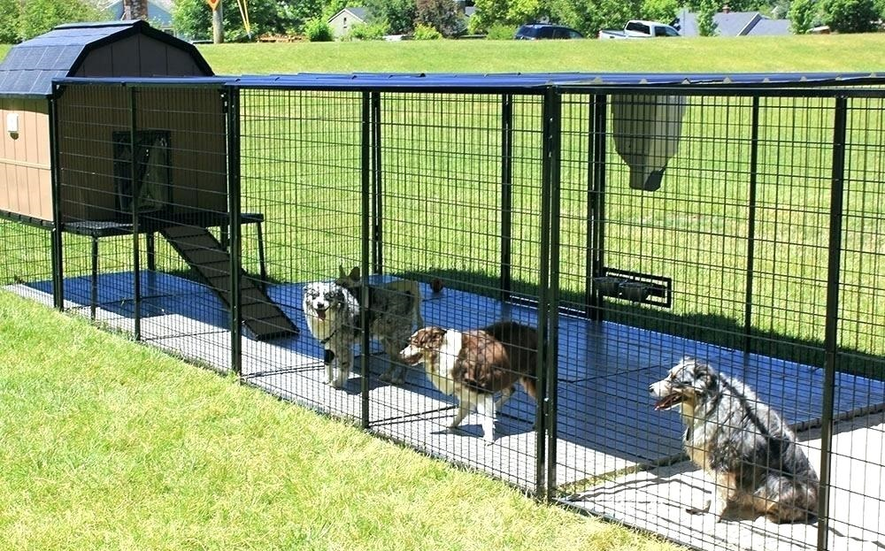 outdoor dog enclosures