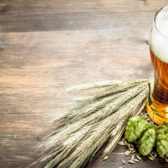 Craft Beer: A Whole New World of Aromas and Flavours