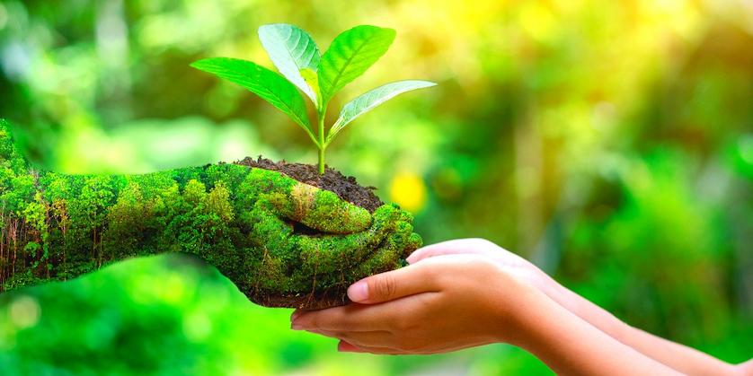 Eco-Friendly-Image
